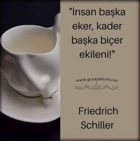 """""""İnsan başka eker, kader başka biçer ekileni.""""   Friedrich Schiller"""