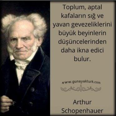 kitap alıntıları, kitap sözleri, arthur schopenhauer